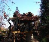 Creative Garden Spaces Inc, tree house construction