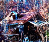 Creative Garden Spaces Inc, custom tree house construction